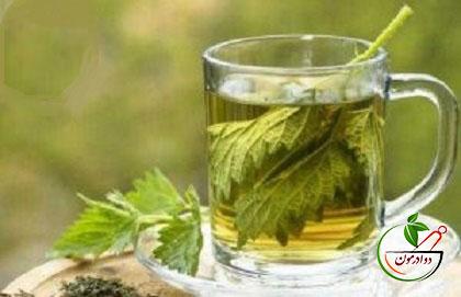 گیاهان داروئی آرامش بخش و نشاط آور