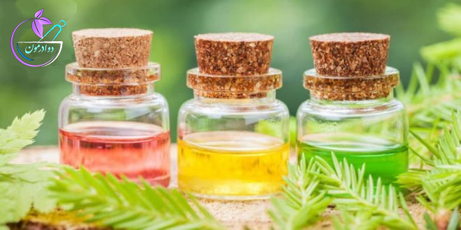 گیاهان دارویی برای ایجاد تعادل در هورمون های بدن خانم ها