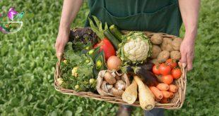 تفاوت ارزش غذایی در مواد غذایی ارگانیک و غیر ارگانیک