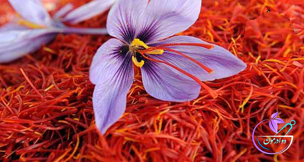 زعفران معجزه سلامتی